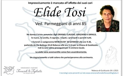 Elide Tosi